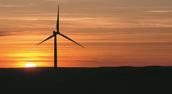 الإمارات العربية المتحدة واسبانيا يركزان على الاستثمار المباشر، والطاقة المتجددة