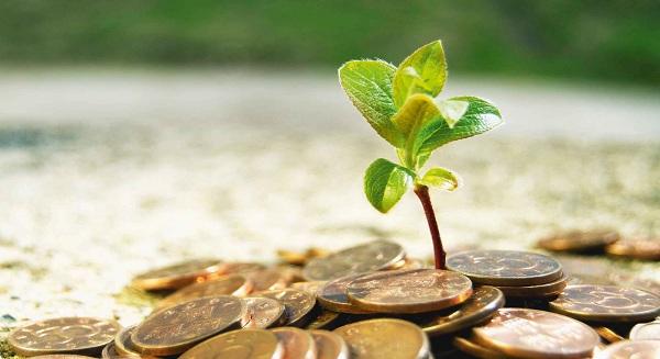 وادواني: اندماج البنوك المحلية يحفز نمو «الصيرفة الإسلامية»