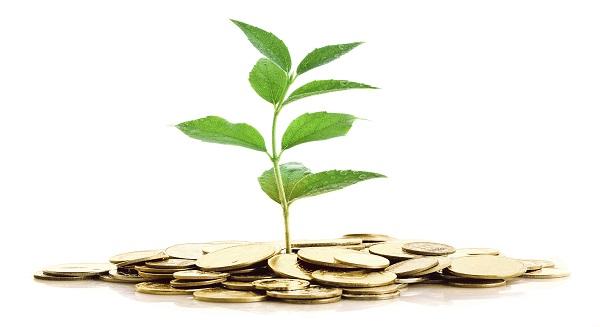 التمويل الإسلامي يسعى وراء فرص للإستثمار عن طريق منتجات الاستثمار البيئي