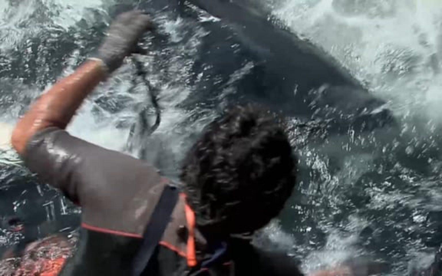 برومو عن تجارة سمك التن
