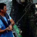 تجارة سمك التن الحلقة 2